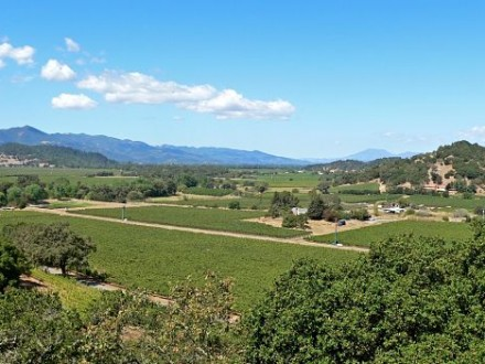 apa Valley Sonoma wine country tour