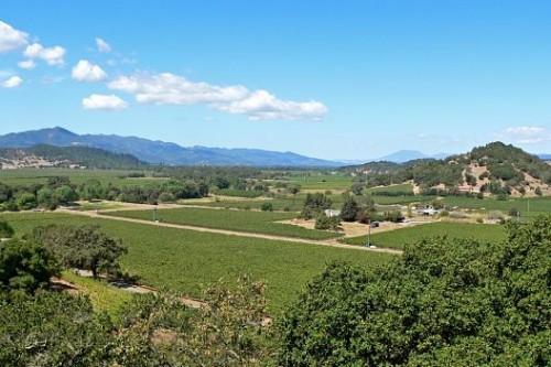 apa Valley Sonoma wine country tour