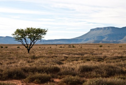 How to Travel to South Africa