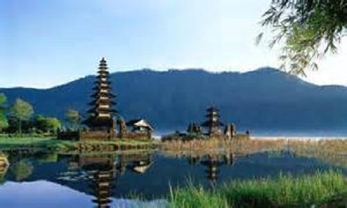 Bali new
