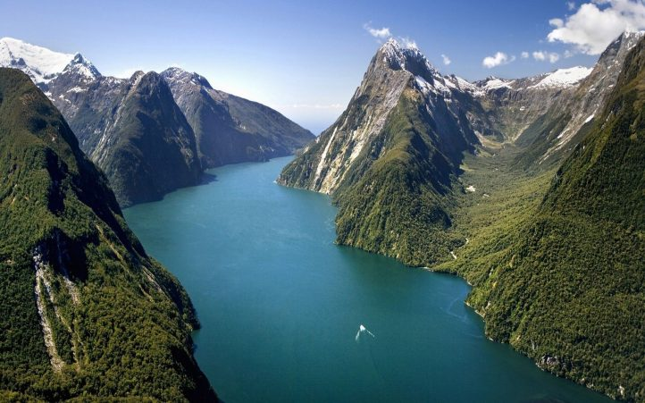 new zealand tours for singles