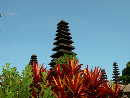 bali, travel tours